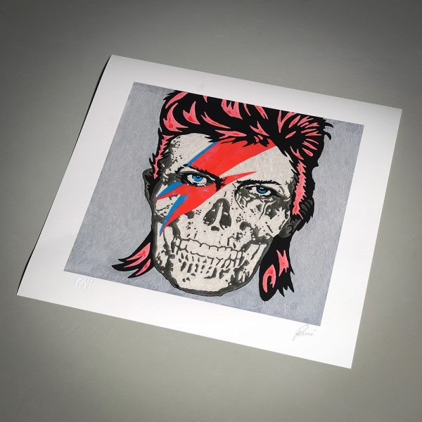 Bowie Skull of Raymond Stuwe