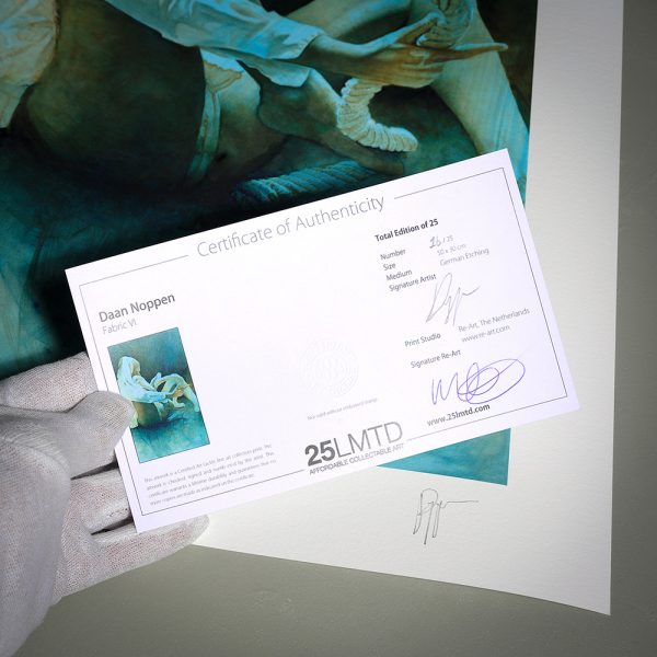 Certificate of Authenticity from Fabric VI